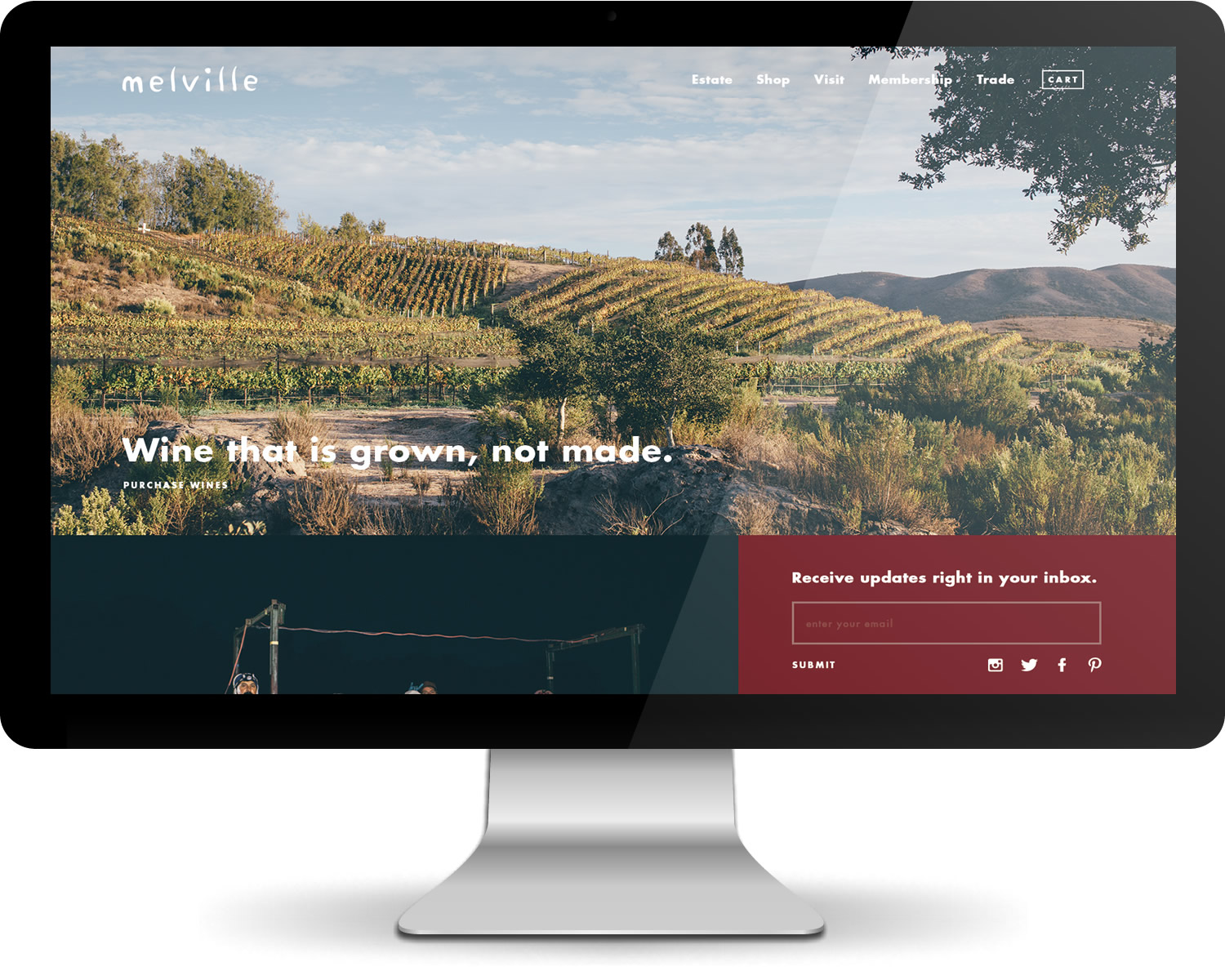 Leo-Basica-design-melville-winery-web-design